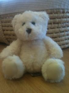 Alyssa's Teddy